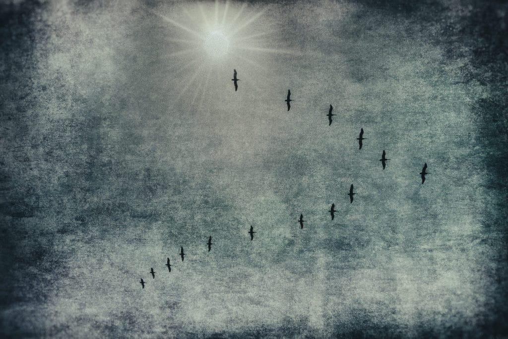 Seth Mayer Fine Art Photography
